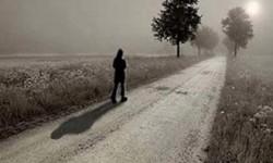 داستان آموزنده درخت و مسافر