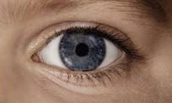 تشخیص بیماریهای چشم با تلفن همراه