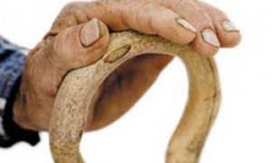 عصای دست سالمندان باشیم