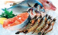 آیا ماهی منجمد بخریم یا نه؟
