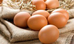 فواید بی نظیر استفاده از تخم مرغ برای کودکان