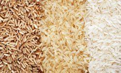 با انواع برنج در دنیا آشنا شوید..!